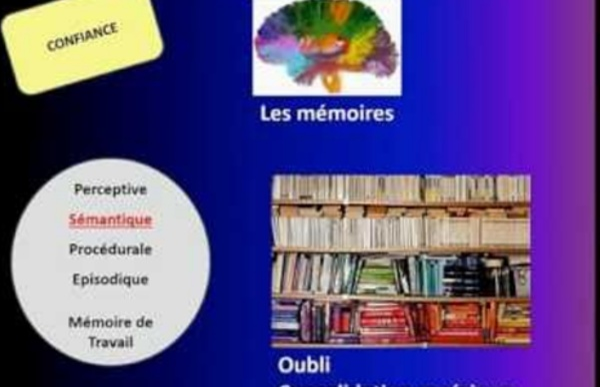 10 min pour découvrir les sciences cognitives de l'apprentissage
