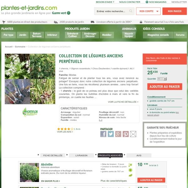 Collection de 6 légumes perpétuels (1 Chou Daubenton,1 Poireau perpétuel,1 Ail rocambole,1 Oignon rocambole,1 Chénopode, 1 Raiponce)