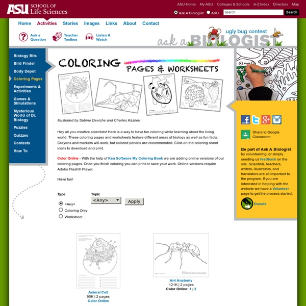 Biology Coloring Pages & Worksheets