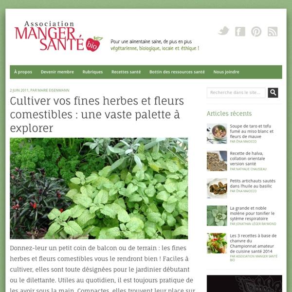 Cultiver vos fines herbes et fleurs comestibles : une vaste palette à explorer