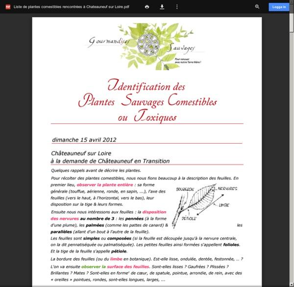 Liste de plantes comestibles rencontrées à Chateauneuf sur Loire.pdf