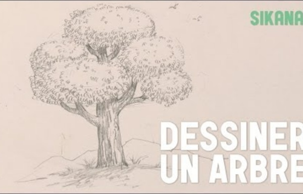 comment dessiner un arbre hd pearltrees. Black Bedroom Furniture Sets. Home Design Ideas