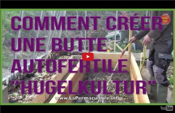 """Comment créer une butte """"hugelkultur"""" optimale pour petits espaces"""