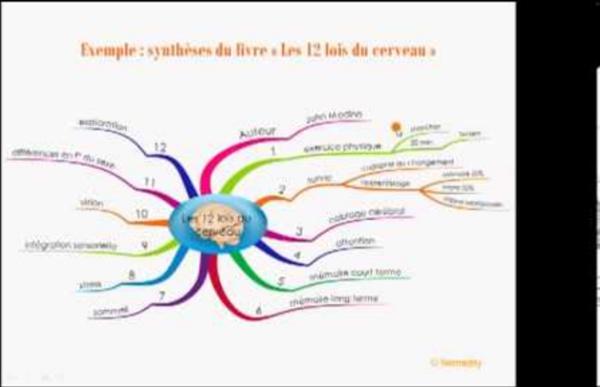 Comment synthétiser et prendre note avec le Mind Mapping