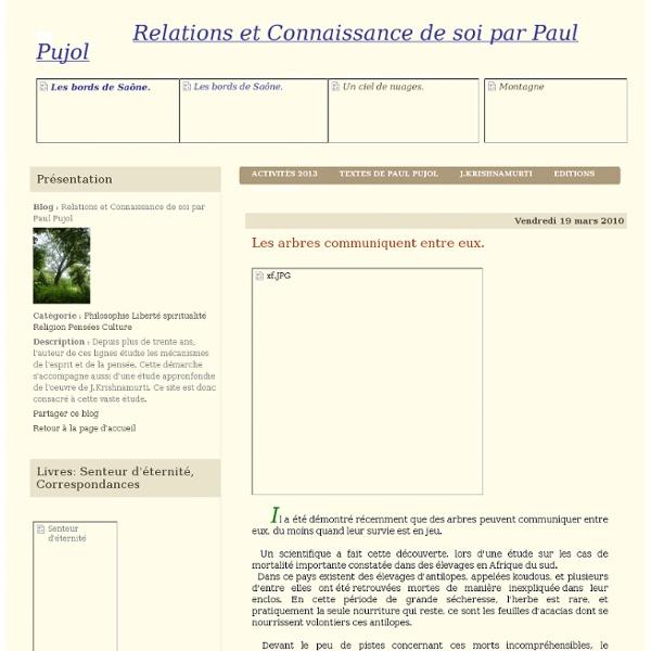 Les arbres communiquent entre eux. - Relations et Connaissance de soi par Paul Pujol