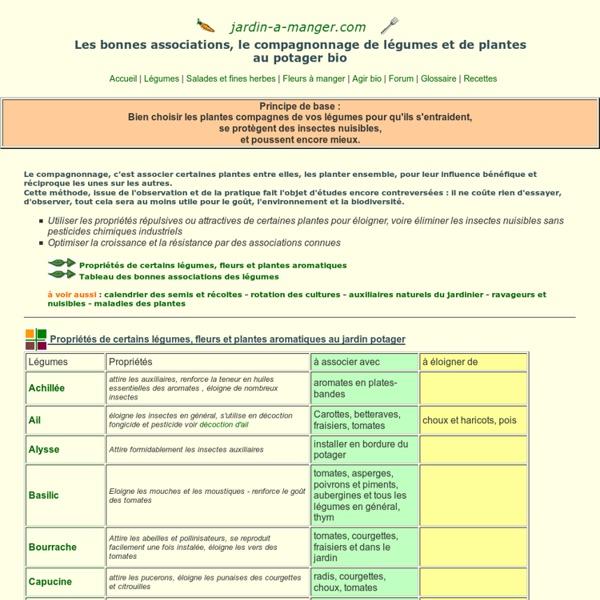 Plantes compagnes, compagnonnage et associations de légumes