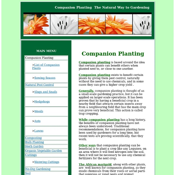 Companion Planting - Secrets of Organic Gardening