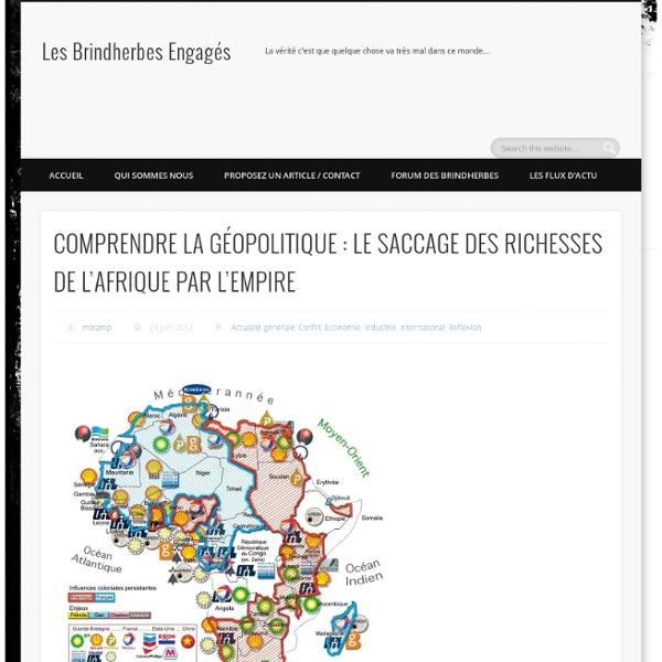 COMPRENDRE LA GÉOPOLITIQUE : LE SACCAGE DES RICHESSES DE L'AFRIQUE PAR L'EMPIRE