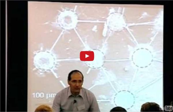 Human brain: fuse with computer chips, biodigital brain control, machines, health, Futurist speaker