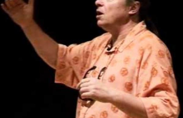 Inculture(s) 2 : L'éducation - Franck Lepage - Scop Le Pave - Conférence gesticulée