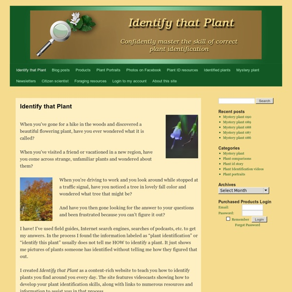 Identify That Plant: Master The Skill Of Plant Identification
