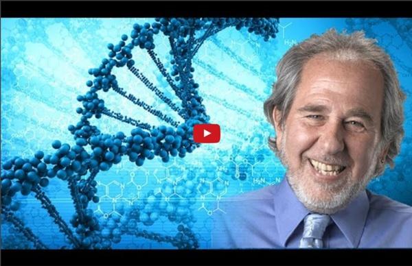 Dr Bruce Lipton : Révolution des connaissances en psychologie ! Reprogrammer ses croyances