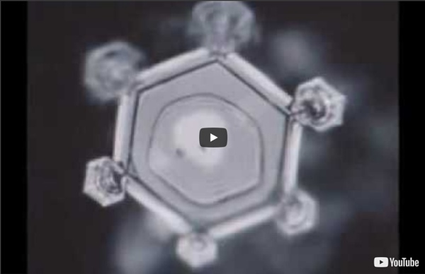 Water, Consciousness & Intent: Dr. Masaru Emoto