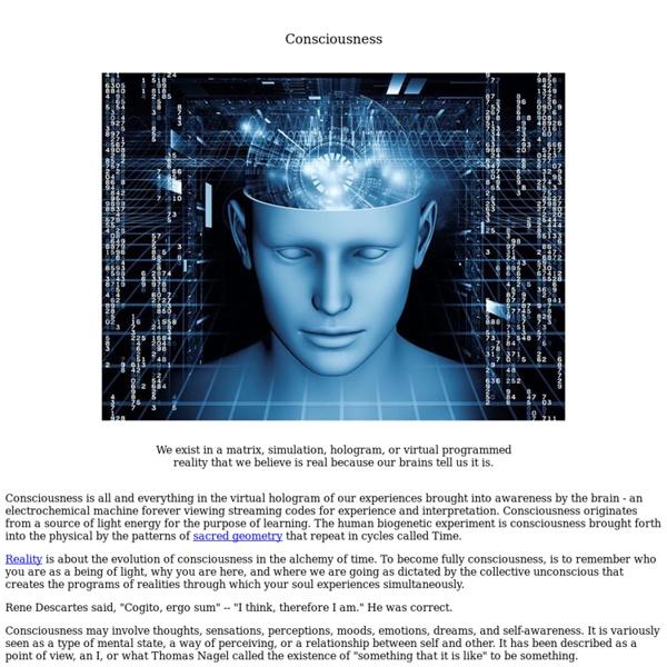 Consciousness, Reality, Hologram, Simulation, Matrix, Awareness