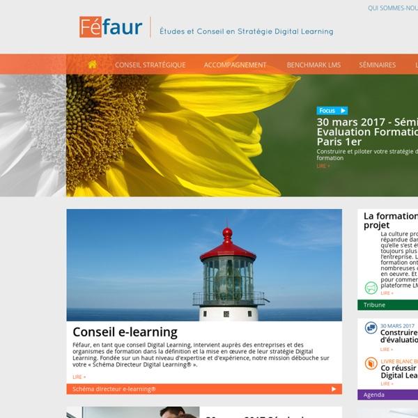 Fefaur - Etudes et conseil e-learning