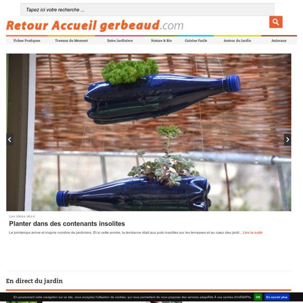 Jardin, conseils de jardinage et nature sur Gerbeaud.com