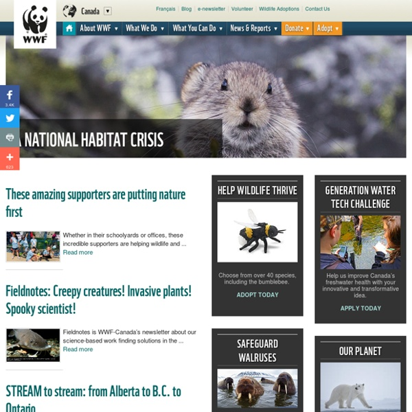 WWF - Local to Global Environmental Conservation