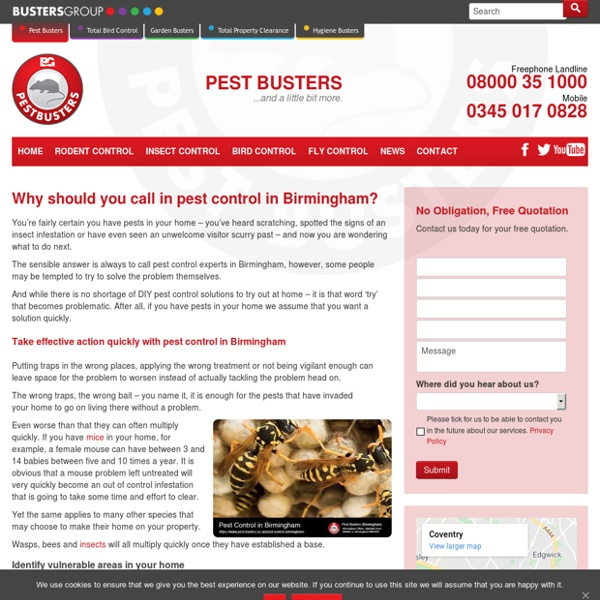 Why should you get in touch pest services in Solihull, Birmingham?
