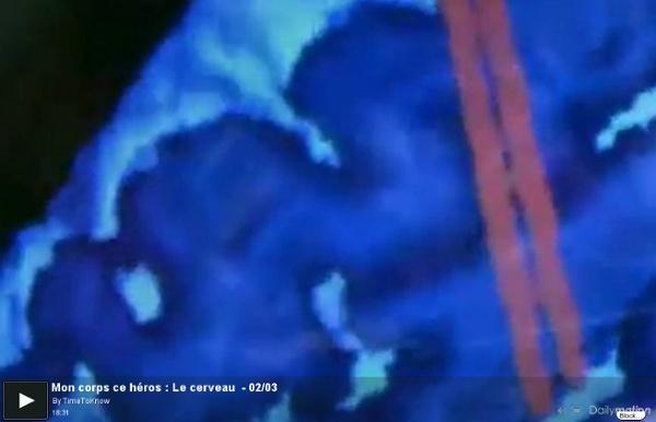 Mon corps ce héros : Le cerveau - 02/03