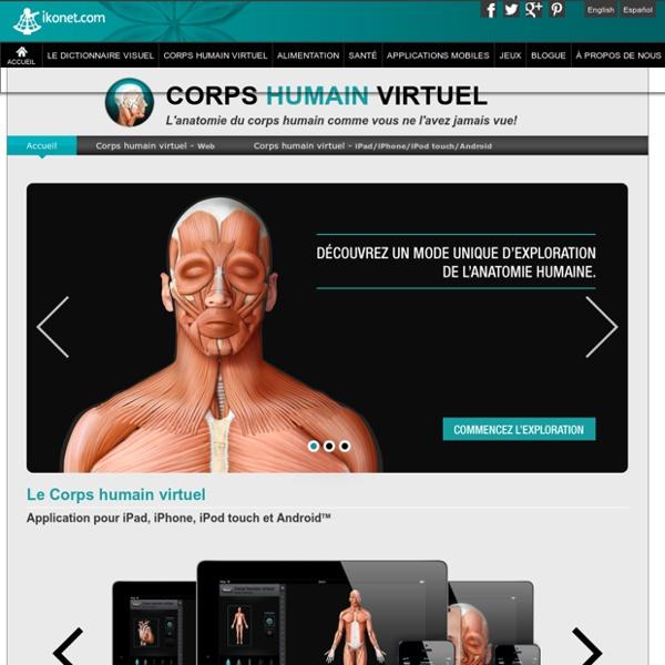 Corps humain virtuel