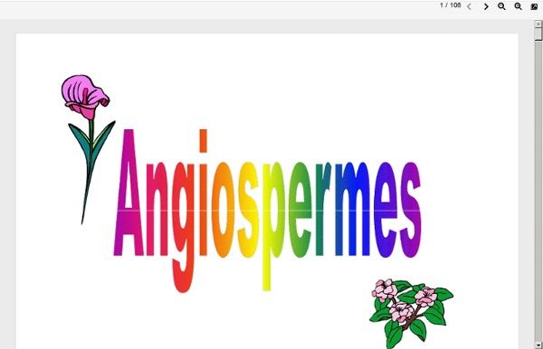 Angiospermes (pdf)
