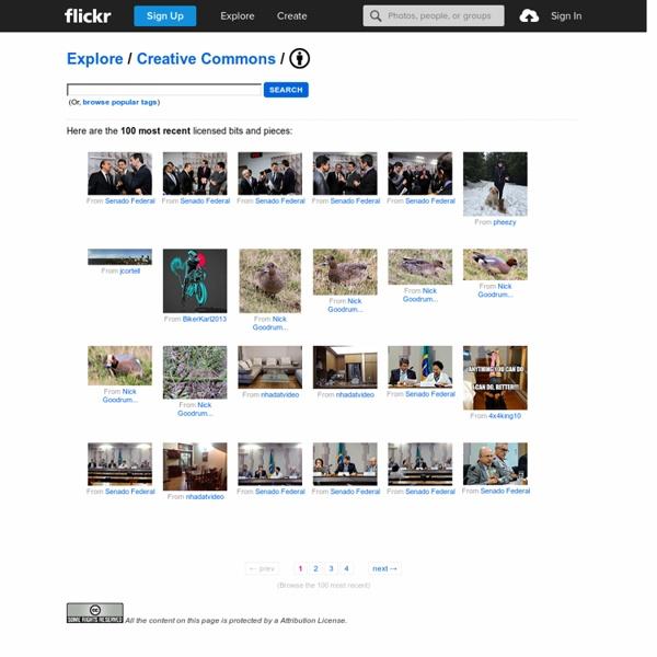 Flickr上免費相片搜尋