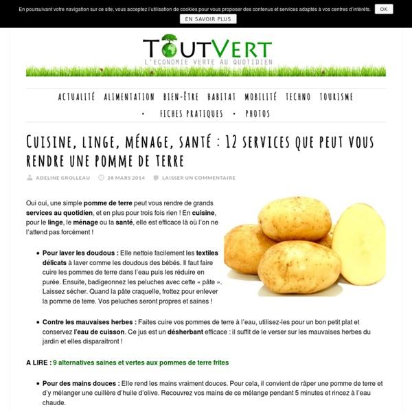 Cuisine, linge, ménage, santé : 12 services que peut vous rendre une pomme de terre Toutvert