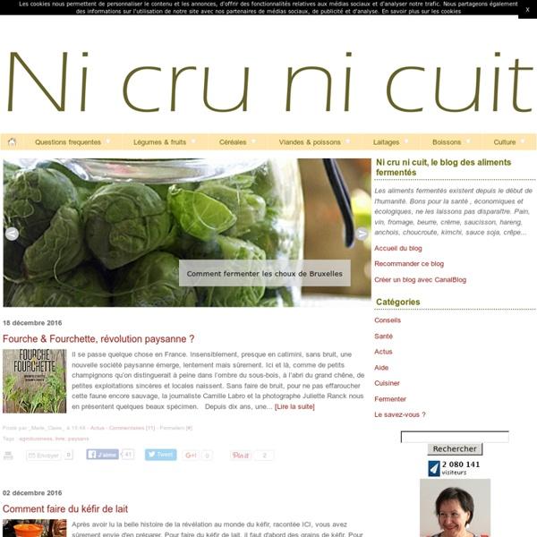 Ni cru ni cuit, le blog des aliments fermentés