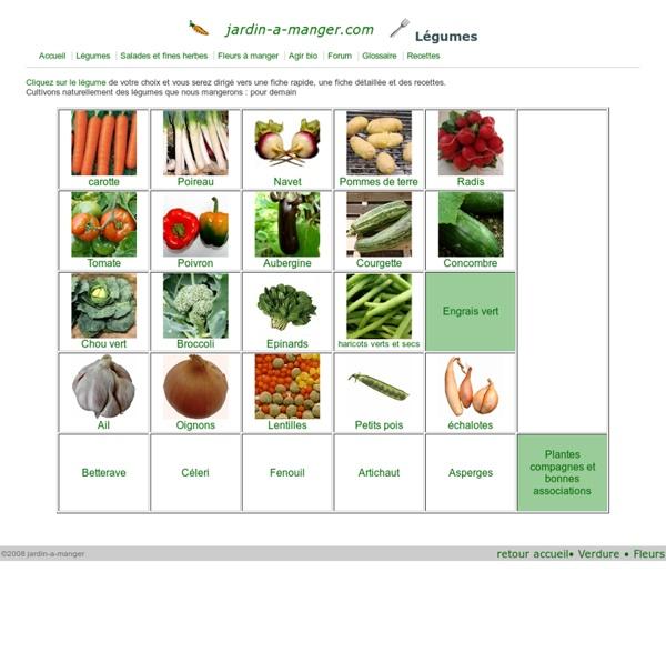 Cultiver des légumes bio au potager, fiches et conseils de jardinage