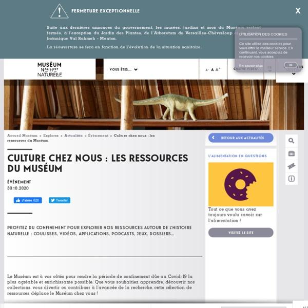 Culture chez nous : les ressources du Muséum