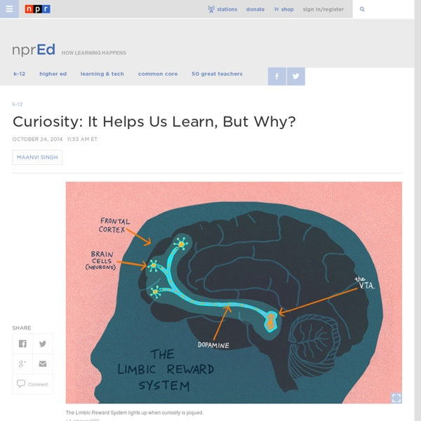 Curiosity: It Helps Us Learn, But Why? : NPR Ed