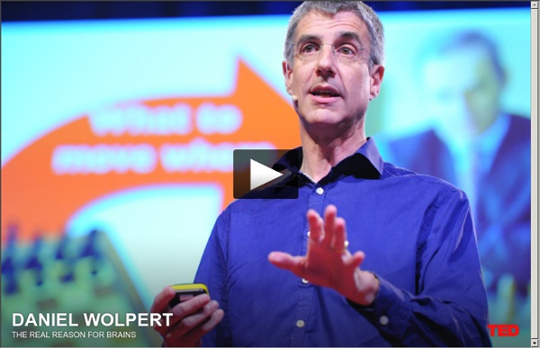 Daniel Wolpert: The real reason for brains
