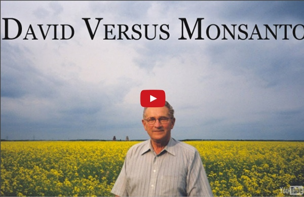 David contre Monsanto