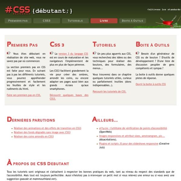 CSS Débutant : cours et tutoriels sur les feuilles de style CSS 1,2 et 3