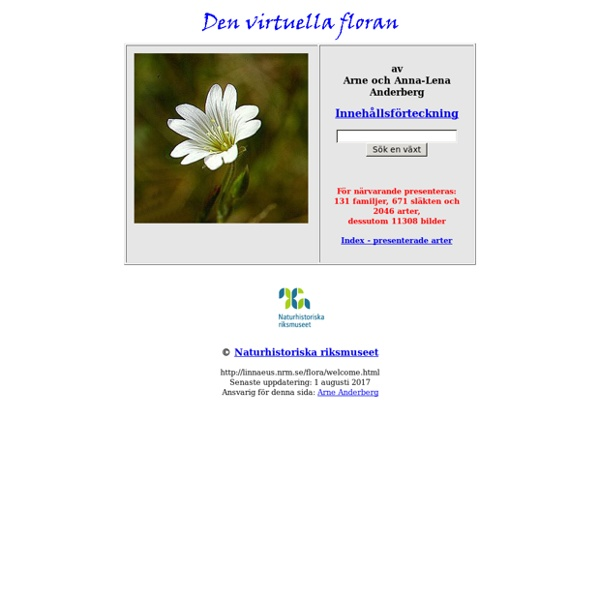 Den virtuella floran