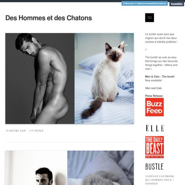Des Hommes Et Chatons des hommes et des chatons | pearltrees