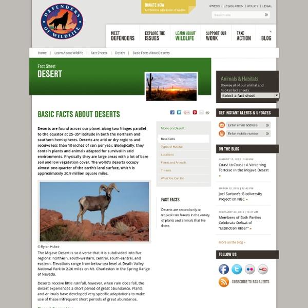 Desert Habitat Facts - Defenders of Wildlife