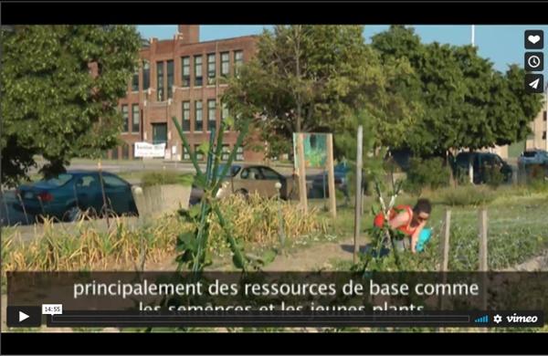 Détroit : l'agriculture urbaine, antidote à la désindustrialisation ?