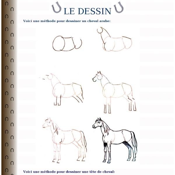 Chevalogie.free Méthode pour dessiner un cheval