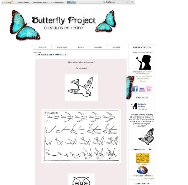 Dessiner des oiseaux - The Butterfly Project