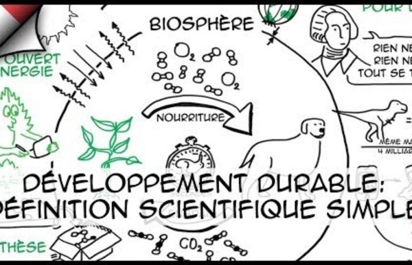 Le développement durable, c'est quoi exactement ? (Episode 1)
