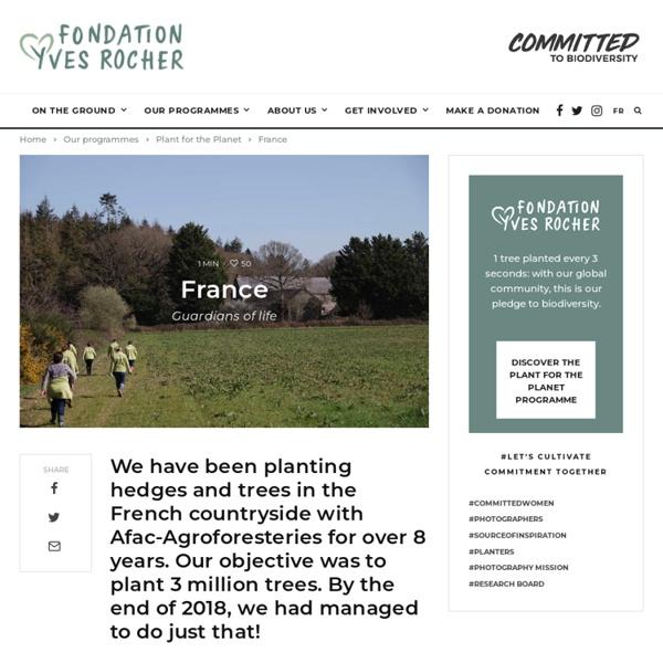 Fondation Yves Rocher - Developpement durable - Reforestation - Protection environnement