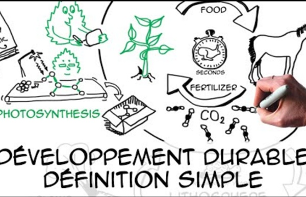 Développement durable: définition simple & scientifique (2015)