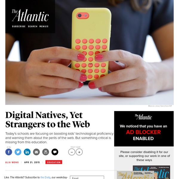 Digital Natives, Yet Strangers to the Web
