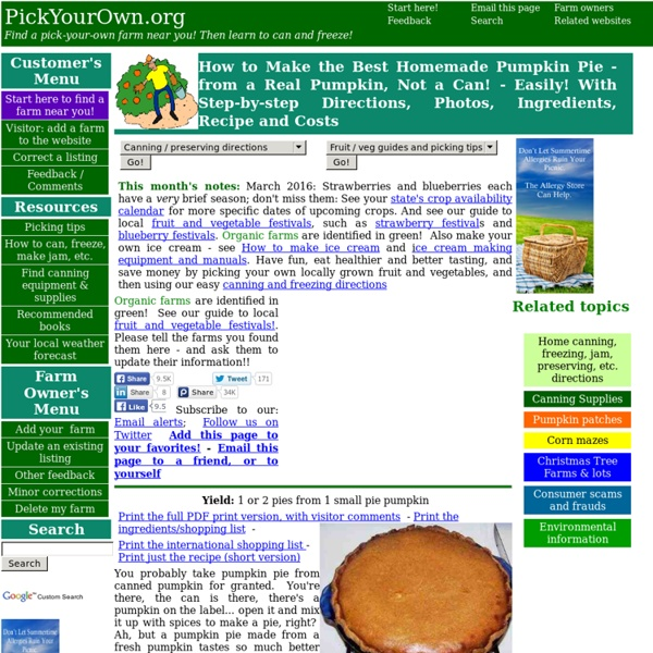 How to Make Homemade Pumpkin Pie - from a Real Pumpkin, Not a Can! - Easily! With Step-by-step Directions, Photos, Ingredients, Recipe and Costs
