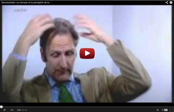 Documentaire: Le Cerveau et la perception de la réalité