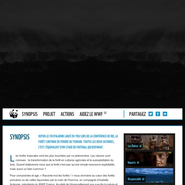 "Web Documentaire ""Raconte-moi les forêts"" - WWF"