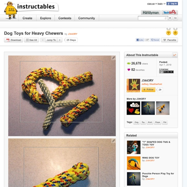 Dog Toys For Heavy Chewers