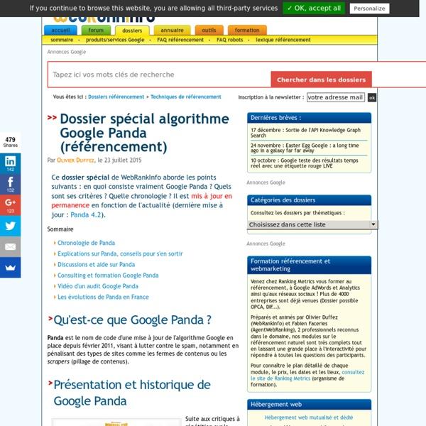 Dossier spécial Google Panda : nombreux conseils Panda Update