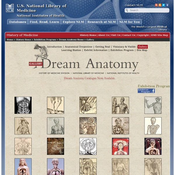 Dream Anatomy: Gallery